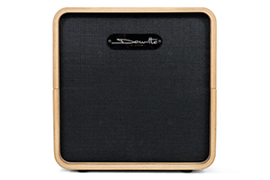 dewitte-wired-baffle-cintre-1x12
